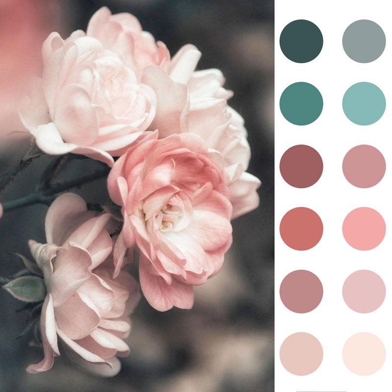 flores con gama color