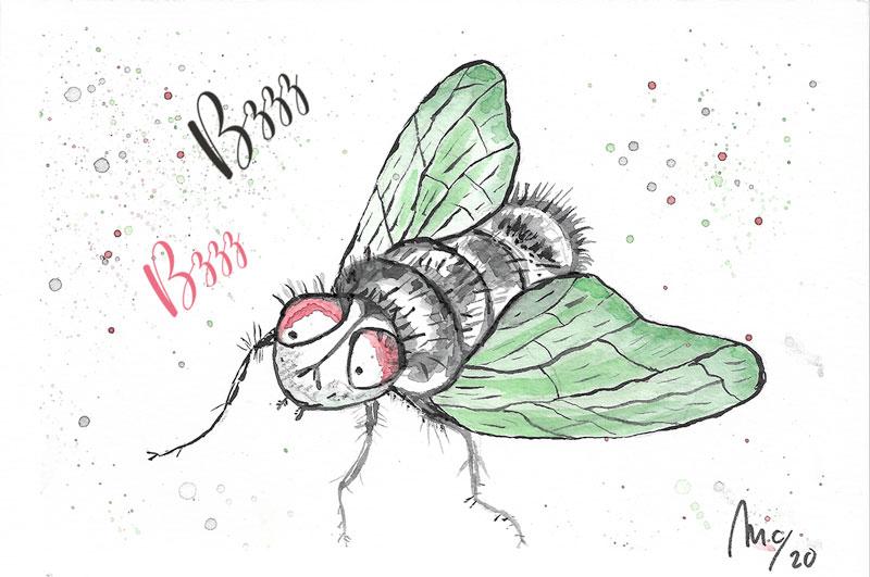 Acuarela mosca simpática