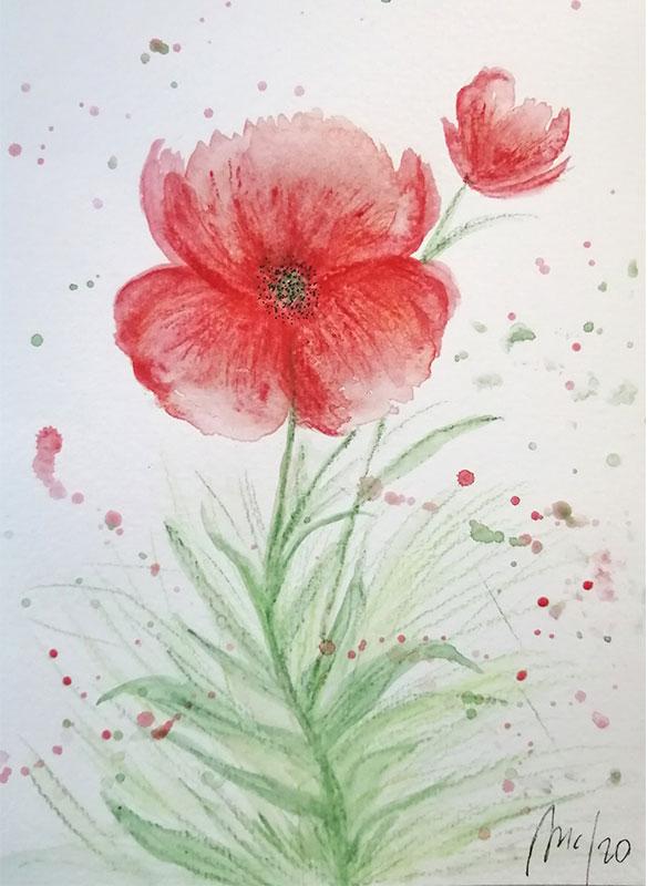 flor roja acuarela